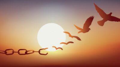 Reflexión: Soy libre perdonando